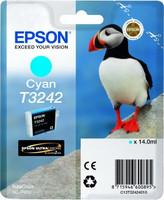 Epson HI-GLOSS2 T3242 PUFFIN