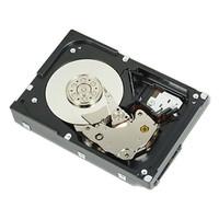 Dell HDD 1TB 7.2K RPM NEAR LINE SAS