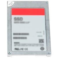 Dell SSD 2.5IN SAS 12G RI 3.84TB