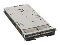 Brocade MLX - Erweiterungsmodul - 10 Gigabit SFP+ / SFP (mini-GBIC) x 20
