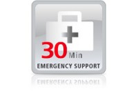Lancom Systems Emergency Support