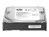 Hewlett Packard HP 2TB 6G SATA 7.2K 3.5IN MDL