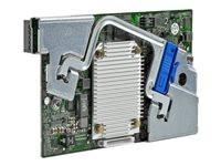 Hewlett Packard HP SMART ARRAY P244BR
