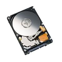 Fujitsu HDD SATA II 1000GB b.critical