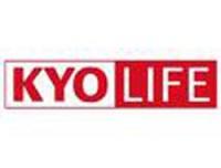 Kyocera KYOsafe Plus 3 Jahre 870KPHYY3