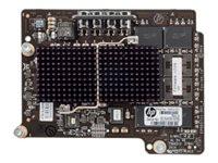 Hewlett Packard 1.2TB RI MEZZ PCIE ACCELERATOR