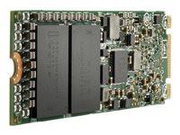 Hewlett Packard EL 960GB NVMe x4 MU M.2 2 Stoc