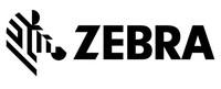 Zebra Standfuß