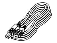 SEIKO USB Kabel für RP-E/D Serie
